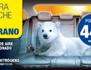 aire-acondicionado-coche-recarga_0